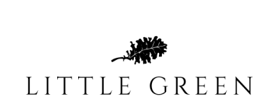 LG_logo-revamp_2016_v2-1