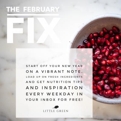 The February Fix
